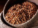 10 Etkili Süper Bitkisel Protein Kaynağı