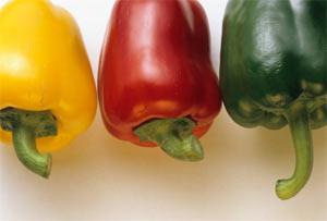 DOLMALIK BİBER Çiğ: Yüzde 90'a yakın su ihtiva eder, kalorisi çok azdır. Özellikle sarı renkte olanları Ç vitamini açısından çok zengindir. Yapısı ve lif açısından zengin olması yüzünden zor sindirilir, iyice çiğneyerek tüketilmesi tavsiye edilir.  Pişmiş:  İçeriğinde bulunan yüksek oranda C vitamini, pişmiş haldeyken de korunur. Ancak bu şekilde tüketildiğinde B vitamininin bir kısmını kaybeder.