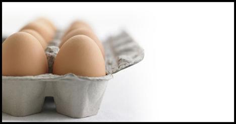 Yumurta  Amerikan Kalp Vakfı'na göre 300 miligram kolesterol, günlük alınması gereken limittir. Beslenme Uzmanı Susan Kleiner ise yumurta sarılarını atmayın; 1 adet yumurta 215 miligram kolesterol içerir. Yumurta sarısı, yüksek orandaki demir ve fosforik asit bileşenleri ile beyin sağlığına etki eder diyor.