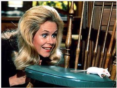 Elizabeth Montgomery'nin Tatlı Cadı'da canlandırdığı Samantha Stephens hem iyi bir ev kadınıydı hem de doğa üstü güçleri vardı.
