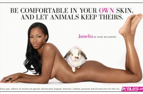 PETA için soyundular - 21