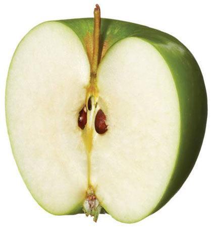 Yer Fıstığı Ezmesi Sürülmüş elma dilimleri Bu karışım, yer fıstığından dolayı protein, elmadan dolayı da lif yüklüdür. Bu ikiliyi tükettiğiniz zaman kendinizi uzun süre tok hissedersiniz. Yarım elmanın dilimleriyle beraber tüketilen 1,5 yemek kaşığı miktarındaki yer fıstığı ezmesi sadece 200 kaloridir.