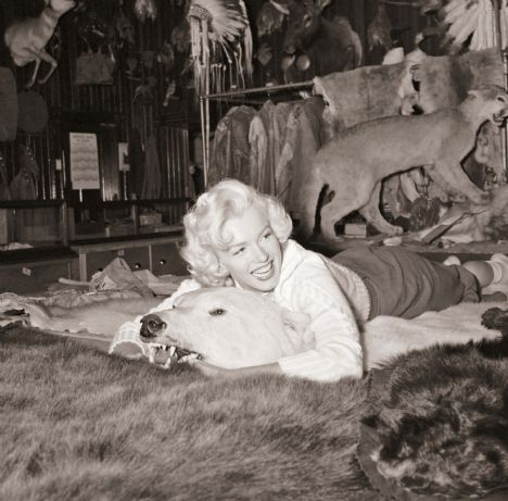 Marilyn Monroe'nun görülmemiş fotoğrafları - 5