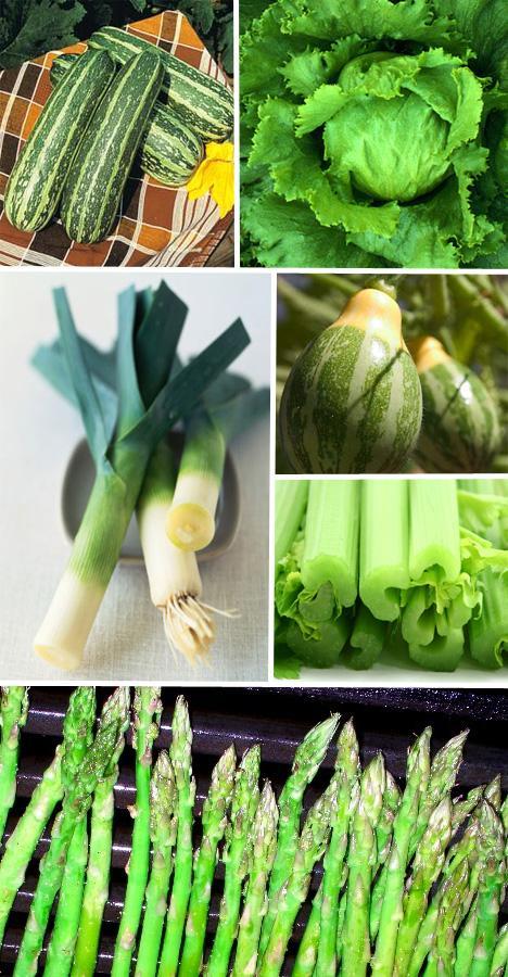 Negatif kalorili sebzeler    Sebzeler ya çok sevilir ya da nefret edilir, ama nefret etmemiz için bir neden yok, sizin için her yönden birçok faydası bulunuyor çünkü sebzelerin. Kereviz sapının neredeyse sıfır kalorili olduğunu ve vücudun kereviz sapını yakmak için kendisinden çok daha kalori harcadığını, biliyor muydunuz?