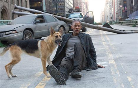 Hollywood filmlerinde mutlu sonla biten filmler kadar sonu üzücü ölümlerle biten filmler de oldukça fazla. İşte en çok ölen ünlü film kahramanları...   Will Smith ( 2 kez öldü) Hangi filmlerde: Yedi Yaşam (Seven Pounds) / Ben Efsaneyim (I am Legend)  Will Smith ayrıca 'Hancock' filminde de öldü fakat yeniden hayata döndü.