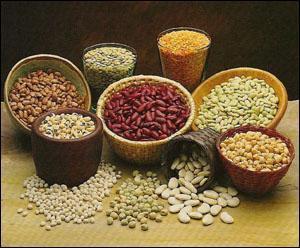 """Baklagillerin hepsi birer sağlık mucizesidir. Şöhreti her yıl biraz daha artan """"Akdeniz mutfağı"""" hikâyesinin temel oyuncularından biri de baklagillerdir. Bu mucize besinler, bitkisel proteinlerden, vitamin ve minerallerden, polifenoller ve liflerden zengin yapıları nedeniyle vücuda çok değerli besin öğelerini kazandırıyorlar. Ayrıca kolesterolü düşürerek kalp hastalıklarıyla mücadeleyi kolaylaştırdıkları, kan şekerini dengeledikleri, kilo almayı zorlaştırdıkları, kan basıncı kontrolüne yardımcı oldukları, kabızlığı engelledikleri, kalın bağırsak divertikülü ve kanseri gibi iki önemli sorunda riski azalttıkları da bilinen gerçeklerden..."""