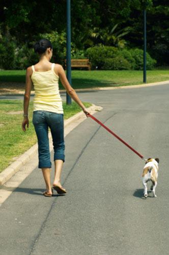 1. Gün Cumartesi  1. Yürüyün:   Otuz dakika yürümek, size fiziksel başarının ilk dozunu verir. Kendi başınıza ya da köpeğinizle yürüyün (köpeğin koklama zamanlarında bekleme süresi sayılmaz; sadece gerçek yürüme süresi geçerli) veya yemek salonunuzdaki masanın etrafında yürüyün. Her gün 30 dakika yürürseniz, diyetiniz için davranış ve motivasyon temellerini oluşturmuş olursunuz!   2. Esneme hareketleri yapın: Yürüdükten sonra beş dakika esneme egzersizleri yapın. Esnemek; kaslarınızın gevşemesine ve esnekleşmesine yardımcı olurken, aynı zamanda meditasyon etkisiyle dikkatinizi, odaklanmanızı ve zihinsel açlıktan uzak durmanızı sağlar.   3. Buzdolabınızı boşaltın: İyi yiyeceklere yer açmak için, mutfağınızdaki beslenme suçlularından kurtulun. Mutfak dolaplarınızdaki, buzdolabınızdaki, gizli kutularınızdaki ve yiyecek sıkıştırdığınız her yerdeki her gıdanın etiketini okuyun. Eğer malzeme listesinde aşağıdakilerden biri varsa, hemen atın:  Basit şeker: Buna esmer şeker, dekstroz, mısır tatlandırıcı, fruktoz, glukoz, mısır şurubu, bal, sırası değiştirilmiş şeker, maltoz, laktoz, malt şurubu, molas, çiğ şeker ve sükroz da dahil.