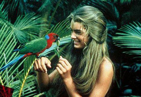 Brooke Shields  Çocuk yaşta kamera karşısına geçen Shields, ''Mavi Göl'' filmiyle ölümsüzleşti. O yıllarda ünlü oyuncuyla ilgili magazin basınında haberin çıkmadığı gün yok gibiydi.