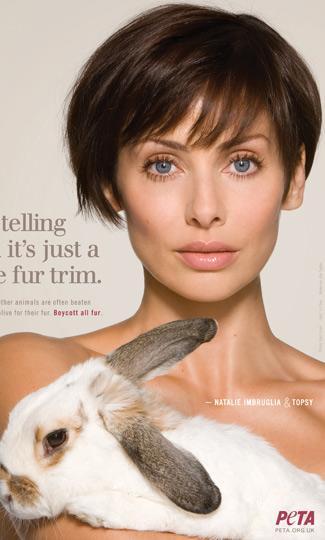 PETA ailesi genişliyor - 25