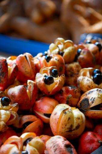 Ackee Jamaika'da yetişen ackee meyvesi yeterince olgunlaşmadan yenildiğinde kan şekerini hızla düşürerek komaya varan tehlikelere neden olabiliyor. Ackee'nin güvenli olgunluğa ulaşması için kabuklarının kızarıp kendiliğinden çatlamasını beklemek gerekli. Bu egzotik meyvenin tadına bakmak isteyenler için not: Ackee'nin yenilebilen tek kısmı ortadaki sarı minik taneleri.