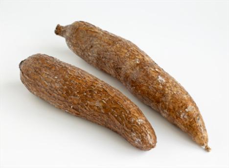 Cassava (Manyok)  Koyu renkli iri bir havucu andıran Manyok isimli sebzenin vatanı Brezilya. En sık tapyoka isimli pudingin yapımında kullanılan bu sebze düzgün pişirilmediğinde köklerindeki ölümcül zehir, siyanür ortaya çıkıyor.