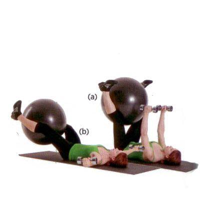 Göğüs, gövde ve kalçayı çalıştırıyor. Sırtüstü yere uzan, kollarını ise tam omuz hizasında ileri doğru uzat. Bacakların arasına bir egzersiz topu al. Bacaklarını yukarı kaldır, (a). Dirseklerini hafifçe kır. Aynı anda bacaklarını da indir (b). Dambılları ve topu yavaşça kaldırıp başlangıca dön. 12-15 tekrarlık üç set yap.