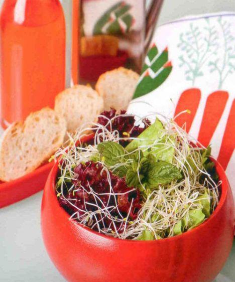 Sumaklı salata (4 kişilik)  Hazırlama süresi: 15 dakika  Malzemeler:  1 küçük kıvırcık salata  1 küçük kırmızı salata (lollo rossa)  1 avuç yonca filizi  Sumaklı sos:  1/3 ölçü/ 50 ml sızma zeytinyağı  2 tatlı kaşığı erik veya nar eşkisi  1 yemek kaşığı üzüm sirkesi  2 tatlı kaşığı sumak  1 tutam tuz  Hazırlanışı: Salatalar yıkanır, kurutulur ve doğranır. Sos malzemesi birlikte çırpılır, servisten 10  dakika önce salata ile karıştırılır.  Püf noktası: Büyük çukur kaseye önce sos, sonra kurutulmuş salata yaprakları ilave edildiğinde salata sönmeyecektir.