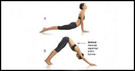 Up Dog / Down Dog   Eller omuzlarla aynı hizada yere dokunurken bacaklar kalça genişliğinde açılmış şekilde plank pozisyonuna geç. Vücut, tepeden tırnağa düz bir çizgi oluşturmalı. Kalçanı aşağı indirip göğsünü ileri çıkart, bilekler de omuzlarla aynı hizada olmalı (a). Nefes verirken kalçanı tavana doğru yükselt (b). Nefes verirken tekrar plank pozisyonuna dön.