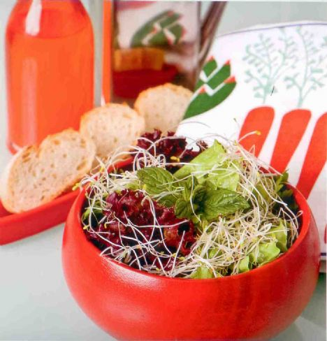 Sumaklı salata  Malzemeler:  1 küçük kıvırcık salata, 1 küçük kırmızı salata (lolo rossa), 1 avuç yonca filizi. <br:  Sumaklı sos:   1/3 ölçü 50 ml sızma zeytinyağı, 2 tatlı kaşığı erik veya nar ekşisi, 1 yemek kaşığı üzüm sirkesi, 2 tatlı kaşığı sumak, 1 tutam tuz.  Yapılışı:   Salatalar yıkanır, kurutulur ve doğranır. Sos malzemesi birlikte çırpılır, servisten 10 dakika önce salata ile karıştırılır.