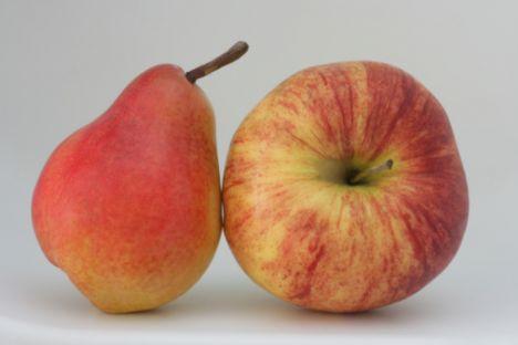 Armut, ayva ve elma Armutta, ayvada ve elmada bol miktarda lif var. Özellikle, şekerinizi ve kolesterolünüzü düşürmeye yardımcı olan ve 'pektin' adı verilen eriyebilen lifler içermeleri, bu meyveleri tüketmeyi yararlı hale getiriyor, öğün aralarında yiyeceğiniz bir orta boy armut ya da elma, kendinizi tok hissetmenizi sağlıyor. Böylece, hem yemek arasındaki atıştırma isteğiniz hem de normal öğünde yediğiniz yemek miktarı azalıyor.