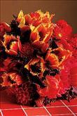 Bu yılın gelin çiçekleri! - 12