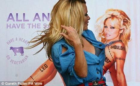Pamela Anderson'dan en seksi pozlar... - 104