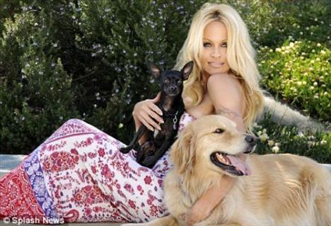 Pamela Anderson'dan en seksi pozlar... - 220