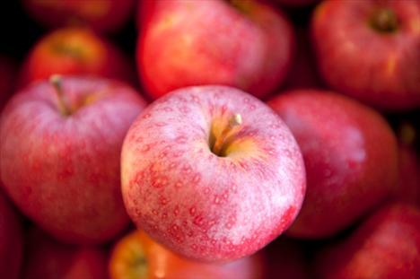 Elma: İçerdiği E ve C vitaminleri sayesinde bağışıklık sistemini güçlendiren elma, direnci de artırıyor. Potasyum bakımından zengin olan bu meyve, bu özelliğiyle de bağırsak faaliyetlerinin düzene girmesini sağlıyor.