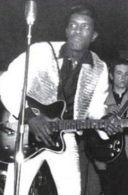 Tarzıyla ve yeteneğiyle bir döneme damgasını vuran blues ve funk gitaristi Watson, 17 Mayıs 1996'da Japoya'nın Yokohama kentinde verdiği konser sırasında öldü.