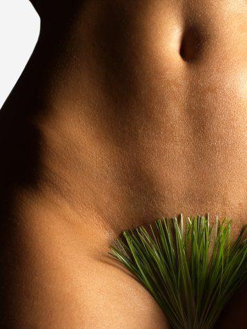 Pubis ya da büyük dudaklarda yağ dokusunu azaltma    Bazı kadınlarda ya yapısal ya da kilo almaya bağlı olarak bu bölgelerde fazla miktarda yağ bulunuyor. Bazı kilolu kadınlar kilo verdikten sonra bu bölgedeki yağ dokusu kalmıyor. Bu yağ dokusu da lokal anestezi altında alınarak buradaki görünüm eski haline getirilebilir.