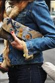 Paris sokaklarından stil dersleri - 79