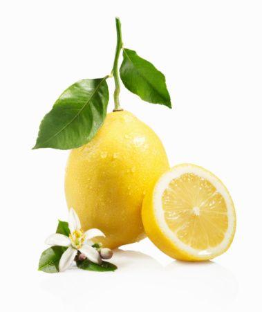 Her birlikteliğine lezzet katan, ekşi, bol sulu, sağlık iksiri limonu sofranızdan eksik etmeyin.  Anavatanı kesin olarak bilinmeyen bu mis kokulu yaprakları dökülmeyen küçük ağaç ılıman iklimlerde yetişiyor.