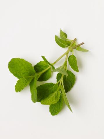 Canlandırıcı bitkiler Nane, papatya, ıhlamur, sarı kantaron, civanperçemi ve yeşil çay gibi bitkilerden birer tutam alarak üzerine kaynar su dökün. İçinden bir çorba kaşığı alın. Ve üzerine 1 çay kaşığı saf zeytinyağı ilave edip yüzünüze sürün. 15 dakika bekletin, yıkayın.