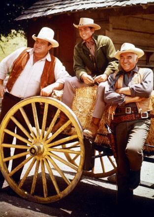 Yayın hayatına 1959 yılında başlayan dizi 1973 yılında sona erdi.