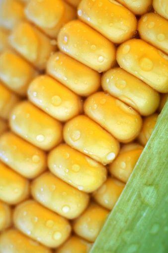 Tiamin için çok iyi bir kaynak olan mısır bu sayede hafızanın güçlenmesine yardımcıdır.  Ayrıca yapısındaki pantotonik asit ile strese karşı vücudun savunmasını sağlar.