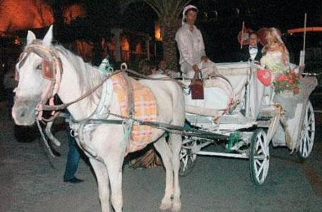 Düğüne cemiyet hayatının tanınmış simaları katılmıştı.   (Hürriyet)