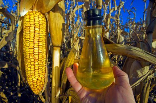 Özellikle son 50-100 yıl içinde doğal olmayan, işlenmiş ve katkı konulmuş gıdalar, margarin kimyasal yolla katılaştırılmış, ayçiçeği, mısır gibi sıcak preslenmiş sıvı yağlar aşırı şekilde kullanılmaya başlanmış; buna karşılık taze sebze, meyve ve tencere yemeklerinin tüketiminde de belirgin bir azalma olmuştur.    Gen yapımız ve buna bağlı vücudumuzda gerçekleşen kimyasal reaksiyonlar doğal olmayan yiyeceklerin tümü ile başa çıkacak yeteneğe sahip değillerdir.   Genler ve yiyecekler arasındaki bu uyumsuzluk hali şişmanlık, diyabet, koroner kalp hastalığı, hipertansiyon, felç, ülser, astım, romatizma, müzmin yorgunluk, kanser ve osteoporoz (kemik erimesi) gibi son yıllarda müthiş artış gösteren çok sayıda müzmin hastalığa neden olmaktadır. Bu hastalıklardan korunmak istiyorsak mümkün olduğunca 5-10 bin yıl öncesine benzeyen bir diyet uygulamalıyız.