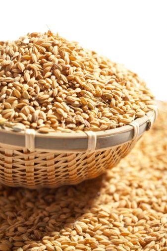Tahıllar ve unlu gıdalar: Hızlı emilen şeker miktarları yüksek olduğu için insülin direncini arttırırlar. Bu nedenle ekmek, bulgur, mısır, çavdar, makarna, pirinç vb. gibi tahıllar ve bunlar ile yapılan yemekler ve  hamur işleri yenmemeli ya da iyice azaltılmalıdır. Diyete adapte olmada güçlük çekenler kısa bir süre için tam buğday ekmeği (köy ekmeği), kepek ekmeği, çavdar ekmeği, yulaf ekmeği ve bulgur yiyebilirler.