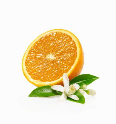 Narenciye  Taneli meyveler ve narenciyeler, meme bezine benzerler. Narenciyeler, flavonoid ve limonen içerir. Bunlar meme bezlerinde lenf hücrelerinin hareketini düzenler.
