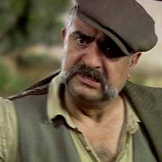 Mehmet Çevik, Hanımın Çiftliği'nde kızı Güllü'ye ve karısına şiddet uygulayan Cemşir rolündeydi.