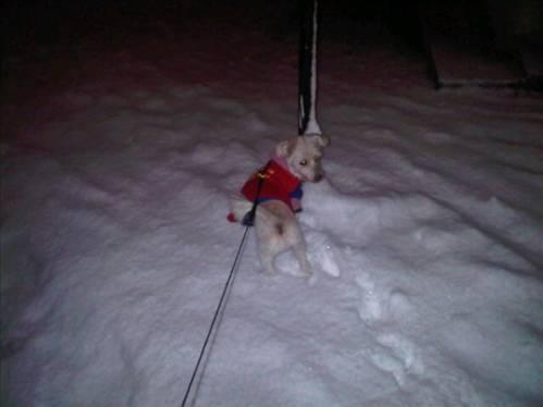Ece Gürsel Su anki halimiz :))) kar topu oglum :)))