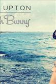 Kate Upton bikini tasarımcısı oldu - 3
