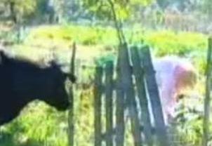 Ünlüler Çiftliği'nin ilk serisindeki renkli yarışmacılardan biri de Banu Alkan'dı.