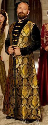 HALİT ERGENÇ  Kanuni Sultan Süleyman rolü ile dikkatleri üzerine çeken Halit Ergenç'in adını taşıyan sayfanın üye sayısı 7 bin 438.