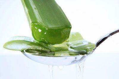Aloevera   Bileşenlerindeki A, E ve C vitamini kremlerin ham maddesi . Minerallerin zengin kaynağı. Değerli amino asitler yer alır. Sahip olduğu şifası nedeniyle bir çok kreme özü katılıyor. Bu kremlerden kullanmanızı tavsiye ederim.