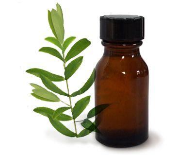 Çay ağacı yağı:  Çay ağacı yağını aynı zamanda akne izlerinde de kullanabilirsiniz. İz olan bölgeyi yağlayın. Birkaç gün kullanımdan sonra aknenin tahriş ettiği izlerin ve kızarıklıkların bulunduğu bölgede farkları göreceksiniz.