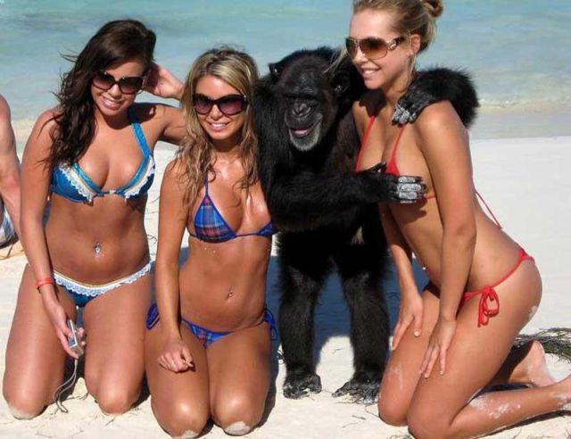 En tuhaf bikini fotoğrafları - 4