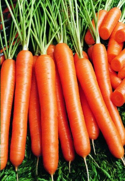 HAVUÇ   Onu gözlere iyi gelen sivilceleri tedavi eden turuncu ve sihirli bir değnek olarak nitelendirebiliriz. Aynı zamanda bir A Vitamini deposu. Dermatolog Howard Murad derinin aft tabakalarındaki hücrelerin aşırı üretimini engellediğini söylüyor. Bu da ölü hücrelerle, cilt yağının birleşerek gözenekleri tıkaması anlamına gelir. Havuç yemenin başka bir nedeni de, A Vitamininin cilt kanseri hücrelerinin gelişimini azaltması. Bu nedenle her gün 16 tane bebek havuç yemeye başlayabilirsiniz.   Diğer seçenek: Bir bardak süt; bir dilim çedar peyniri.