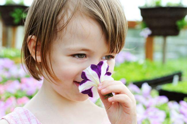 Bebekler için kullanılacak ürün seçiminde dikkat edilecekler:  Özellikle bebeğin her gün banyo yaptırıldığını düşündüğümüzde bebeğin saç ve tüm cildi ile temas eden şampuanının seçiminde dikkatli olunmalıdır. 26 alerjen parfüm maddesi, alkol ve paraben içermeyen şampuanlar tercih edilmelidir. Mümkün olduğu kadar dermatolojik testleri yapılmış alerjiye neden olmadığı ispatlanmış ve Uluslararası kurumlar tarafından onaylanmış ürünler kullanılmalı. Koku bileşeni olarak 26 alerjen parfüm içermeyen bebek şampuanları ve bakım ürünleri tercih edilmelidir.