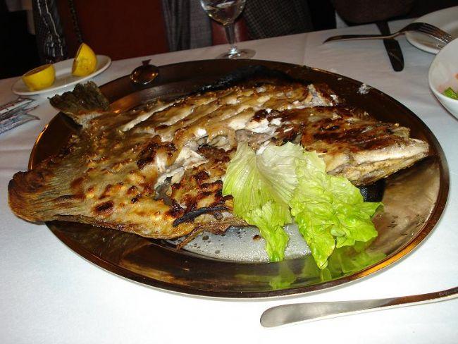 Kalkan: Nerdeyse tamamen yusyuvarlak olan bu pulsuz balık en çok aranan balıklardan biridir. Esas olarak Karadeniz'de bulunan kalkan balığı nadir olarak Marmara, Ege ve Akdeniz'de de bulunur. 1 mayıs-30 haziran arası Türkiye'nin tüm karasularında avlanması yasaktır.  Ortalama boyu 40-50 cm olan kalkan, beyaz etiyle en lezzetli balıklardan biridir. Kalkan, genelde tavada pişirilir, ızgarası, şişi ve buğulaması da yapılır. Yemeden önce derisindeki düğmeler ayıklanmalıdır. Ocak-Nisan arası kalkanın en lezzetli olduğu dönemdir.