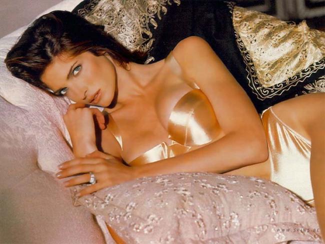 Stephanie Seymour - $ 15 milyon