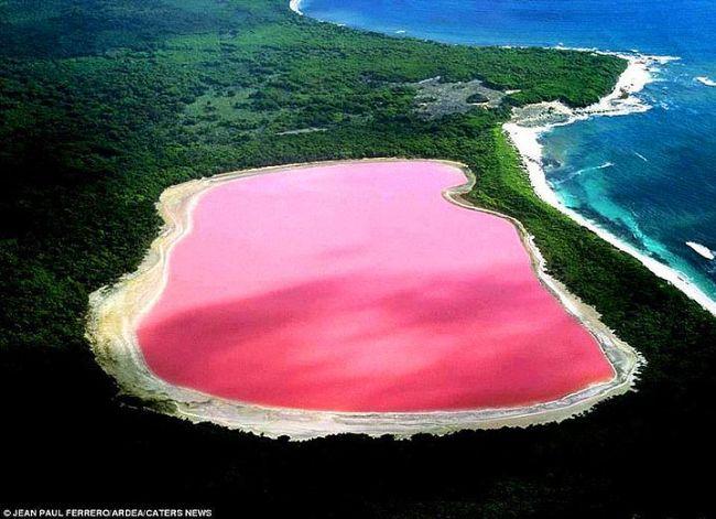 Hillier Gölü, Avustralya.  Hillier Gölü, sanki suyla değil çilekli süt ile dolu! Bir tuz gölü olan Hillier, barındırdığı tuz tüketen ve karşılığında bu pembe rengi üreten algler sayesinde her yıl binlerce turist tarafından ziyaret ediliyor.