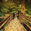 Dünya'nın En Çılgın 23 Asma Köprüsü - 11