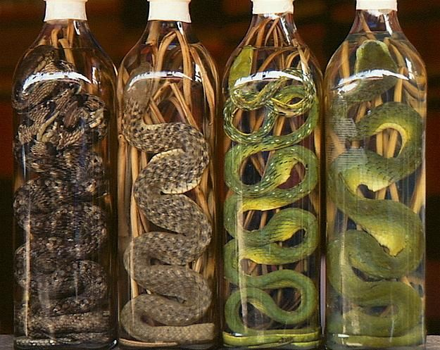 Yılan Şarabı:   Pirinç şarabının içerisine yılan konması ile üretiliyor. Asya'da özellikle kelliğe ve cinsel güçsüzlüğe karşı çare olarak kullanılıyor.